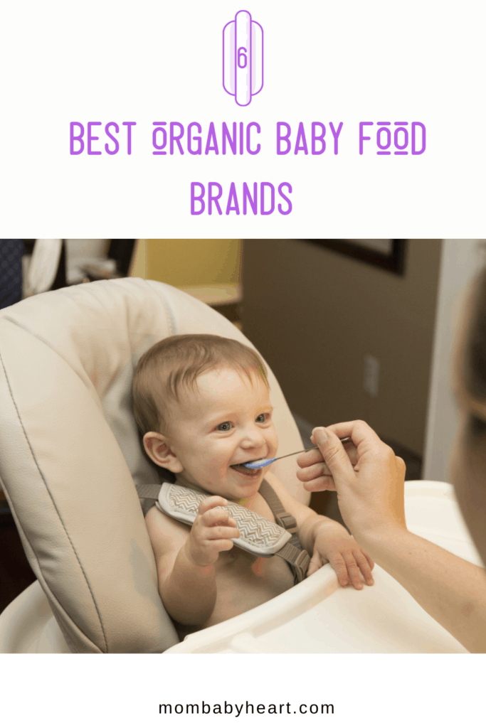 Pin image of best organic baby food